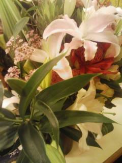 日記:花…